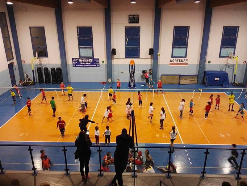 Progetto scuola/settore giovanile Gabbiano Top Team Volley Mantova