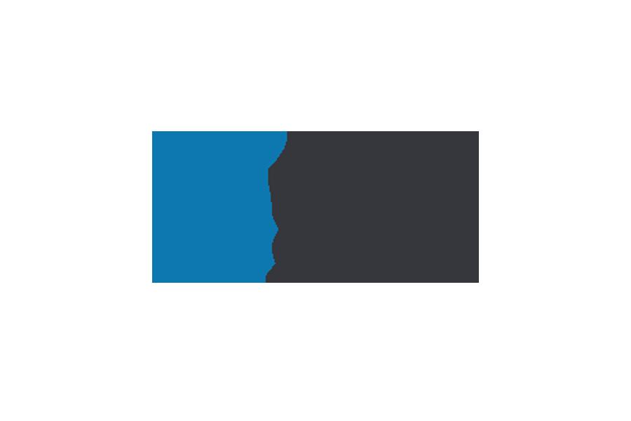 Logo Consult Service